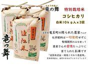 【2020年産】竜の舞 こしひかり(白米)30kg:10kgx3袋