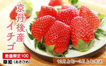 【数量限定100】京丹後産イチゴ(12月上旬~3月上旬発送)