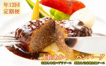 SB020 【ホテルメイド】土佐あかうし100%ハンバーグステーキ自家製ソース2種(150g×2個)年12回お届け