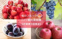 【ニトリ観光果樹園が贈るフルーツ王国定期便!】旬のフルーツ3回発送コース