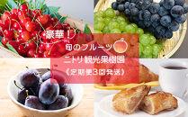 【ニトリ観光果樹園が贈るフルーツ王国定期便】豪華!!旬のフルーツ3回発送コース