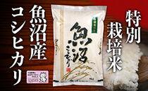 【2020年度産】魚沼産特別栽培米コシヒカリ 5kg