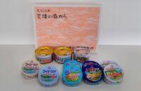 三陸の海からミヤカン缶詰詰合せセット11缶