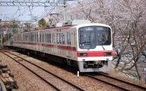 神戸電鉄1日乗り放題チケット