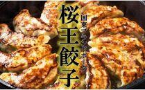 くにさき桜王豚の餃子60個/計0.96kg