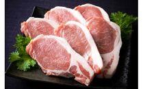旨い大分県産豚でとんかつ15枚食べ放題!ロース肉1.5kg