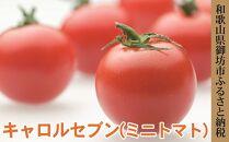 キャロルセブン(ミニトマト)2㎏