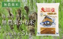 【数量限定・無農薬米】魚沼産コシヒカリ「無農薬かも米」5kg(令和2年産)