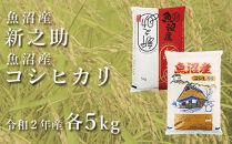 中魚沼産「新之助」5kg+魚沼産コシヒカリ「金印」5kg食べ比べセット(令和2年産)