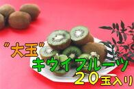 【数量限定】厳選!大玉キウイフルーツ【秀品】20玉入り(約3.6kg) 4L~6Lサイズ