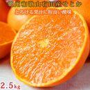 ☆先行予約☆とろける食感!ジューシー柑橘 せとか 約2.5kg