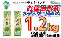 創業200年の老舗・古賀製茶本舗九州八女工場直送お徳用煎茶1.2kg