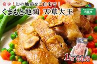 希少!くまもと地鶏 天草大王 もも肉 1kg