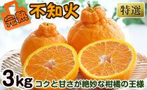 特選不知火(デコポン)3kg樹上完熟和歌山県産