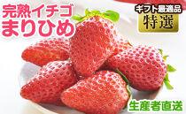 完熟イチゴまりひめ特選和歌山県産