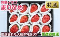完熟イチゴまりひめ特選デラックス和歌山県産