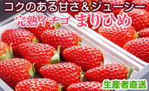 完熟イチゴまりひめ2パック和歌山県産