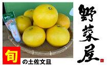 野菜屋高知の旬のお届け物【土佐文旦】