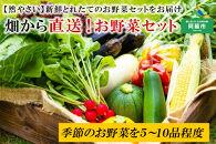 <畑から直送>季節のお野菜セット