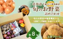 北海道千歳市より産地直送☆旬のお野菜詰め合わせ約8kg《土居ファーム》
