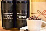 《人気の定期便6カ月コース》自家焙煎【てるまに珈琲】スペシャルブレンドコーヒーギフトセット<粉>