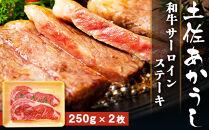 土佐あかうし【和牛サーロイン/ステーキ250g×2枚】