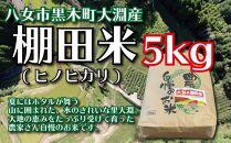 九州・福岡からお届け!「奥八女・黒木大淵の棚田米」5kg