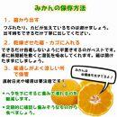有田みかん【特秀品M~L、高糖度】10kg!2021年10月以降順次発送