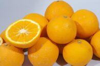 蛍飛ぶ町から旬の便り きよみオレンジ訳あり3kg 平武農園