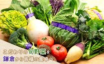 「鎌倉いちばブランド」新鮮お野菜詰め合わせセット