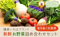 【6ヶ月連続毎月届く定期便】「鎌倉いちばブランド」新鮮お野菜詰め合わせセット