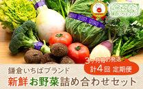 【3ヶ月毎計4回定期便】四季を味わえる「鎌倉いちばブランド」新鮮お野菜詰め合わせセット