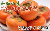 【先行予約】和歌山産富有柿ご家庭用約7.5kgサイズ混合