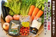 ※受付終了※【ポイント交換専用】野菜とキノコが10品目入ったおまかせ野菜セット旬の野菜とキノコを盛り合わせ!
