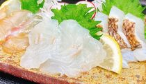 【紀州漁彩】旨味をぎゅっと濃縮した塩熟真鯛・炙り・漬け 食べ比べセット(1食個包装)×4食ずつ