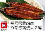 福岡県産うなぎ蒲焼大2尾(1尾あたり156~189g)
