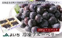 冷凍ブルーベリー <250g×4パック>