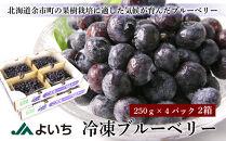 冷凍ブルーベリー <250g×4パック 2箱>