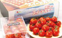 広島県三原市佐木島産スイートルビートマト(約1kg)