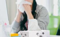 紙のまち苫小牧 鼻セレブティッシュペーパー(30箱)