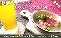 春限定!!麒麟ラガービール500ml12缶&グリーンアスパラ1.5kgセット【予約開始】