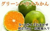 【夏の上質品】グリーンハウスみかん約2.5kg化粧箱入り(S~Lサイズおまかせ)