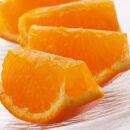 <4月より発送>たっぷり訳ありセミノールオレンジ4.5kg+135g(傷み補償分)  【わけあり】