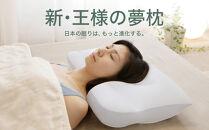 AA002 新・王様の夢枕(超極小ビーズ素材、専用枕カバー付き)