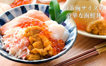 【6月発送・定期便全6回】北海道といえば!海鮮丼の具60g×4個セット