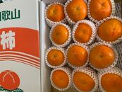 富有柿赤秀品Lサイズ化粧箱(12~13個)