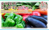 東神楽町夏の野菜10点セット
