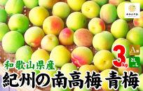 有田の南高梅3㎏Lor2L青梅A品秀品和歌山県産梅酒作り用梅ジュース作り用