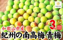 有田の南高梅3㎏サイズミックス青梅A品秀品和歌山県産梅酒作り用梅ジュース作り用