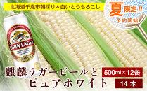 夏限定!!麒麟ラガービール500ml12缶&白色とうもろこしピュアホワイト14本セット【予約開始】